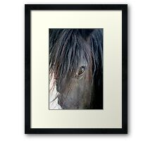 Horse eye Framed Print