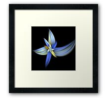Tawny Blue Lily Framed Print
