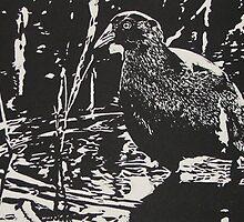Tasmanian native hen by Linda Abblitt
