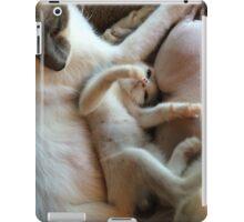 Playful Kitten iPad Case/Skin