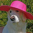 Elegant spring straw hat by Trine