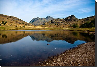 Blea Tarn - Lake District (May) by Trevor Kersley