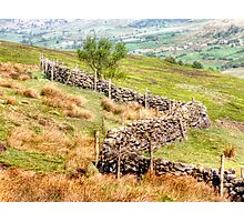 Rosedale Bank Photographic Print
