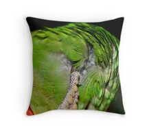 Feather Scratch Throw Pillow