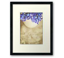 Bella Blue Framed Print