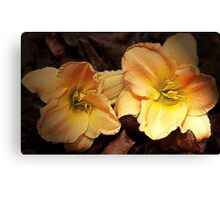 """Day Lillies On Show"" Canvas Print"