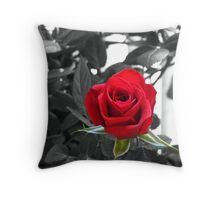 Miniature Rose Bud - Mother's Day Throw Pillow