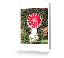 Red Bomb Greeting Card