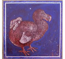 Texturized Dodo Photographic Print