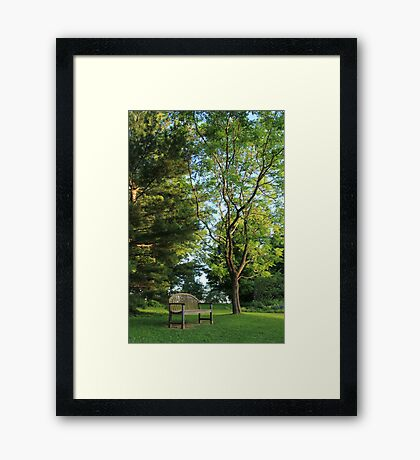 Bench Among The Trees Framed Print
