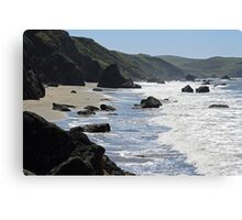 Bodega Bay Coastline Canvas Print