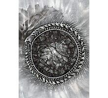 Uroboros and the Cosmic Egg  Photographic Print
