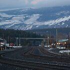 Truckee Railroad Tracks by Dory Breaux