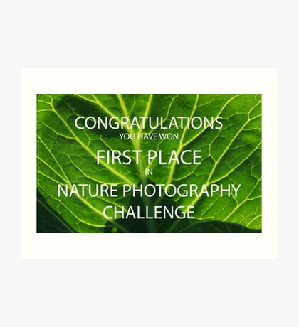 NATURE PHOTOGRAPHY CHALLENGE BANNER Art Print