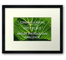 NATURE PHOTOGRAPHY CHALLENGE BANNER Framed Print