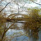 Bridge Reflection in Spring by linmarie