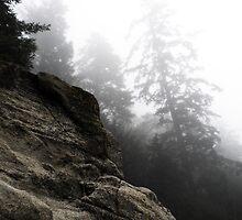Lifting Fog by Sarah Brooker