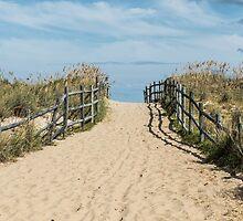 Sandbridge Isolated by Sherry V. Smith Fine Art Photography
