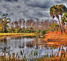 River Bend Park by Michael Damanski