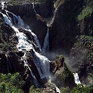 Baron Falls by Alfredo Estrella