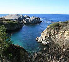 Carmel Coast 1 by Maurine Huang