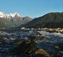 cook river, fox glacier,south westland, nz by rina  thompson
