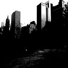 a darker view from the park by ShellyKay