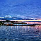 Edmonds Harbor by rocamiadesign