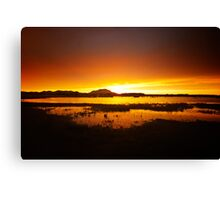 Willow Lake Orange Canvas Print