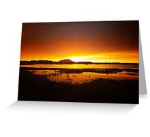 Willow Lake Orange Greeting Card
