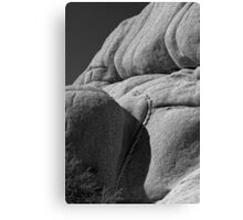 Joshua Tree Monzogranite Abstract Canvas Print