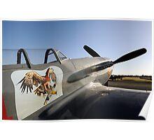 Warbirds Echuca 2011 Poster