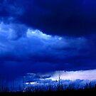 Dusk on the Prairie by Katie WIsniewski