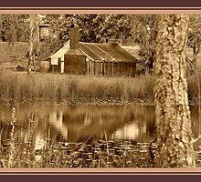A Tinny Reflection by Burnie