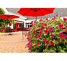 Red Pansies and Umbrellas Glenora Distillery Photographic Print