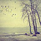 My beloved Lake by Angela King-Jones