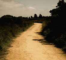 Yellow Brick Road by O(c)T YoungBearPhotography