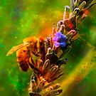 Pollen is life by Andrew (ark photograhy art)
