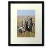 Elephants, Serengeti, Tanzania.   Framed Print