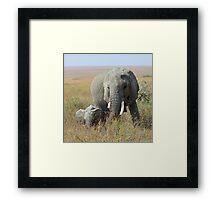 Elephants, Serengeti, Tanzania  Framed Print