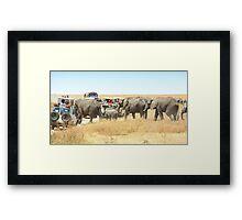 Elephants Have Right Of Way, Serengeti, Tanzania. Framed Print