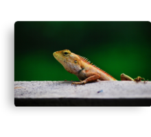 when I grow up I want to be a crocodile Canvas Print