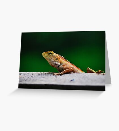 when I grow up I want to be a crocodile Greeting Card
