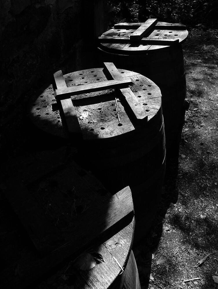 Barrel loads of fun by ragman