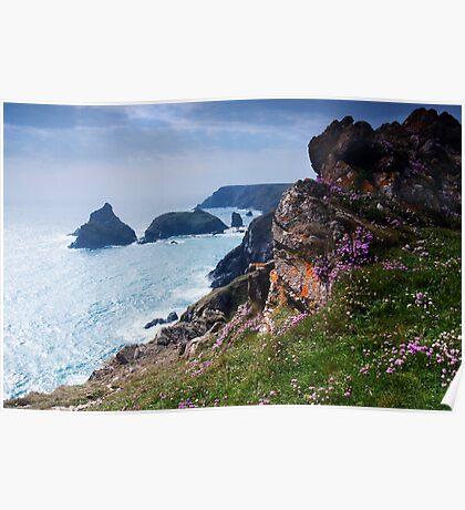 Kynance Cove, Cornwall,UK Poster