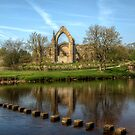 Bolton Abbey by DAVID JACKSON
