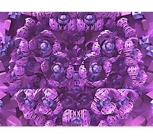 Fractal Flowers Photographic Print