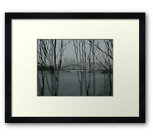 Sydney harbour bridge through trees Framed Print