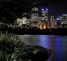 Sydney Through the Trees by Ian Berry