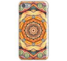 Mandala #30 iPhone Case/Skin